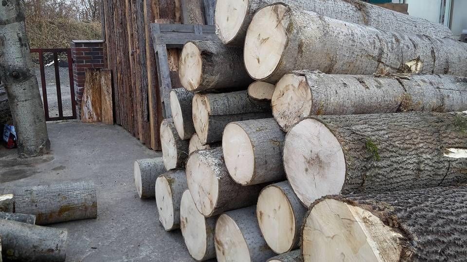 Eine Menge Holz